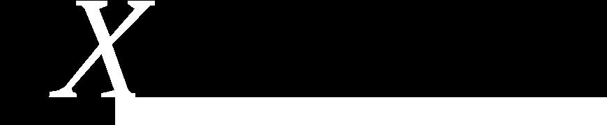 L'Expert Carrossier - Icône X du logo avec bande blanche